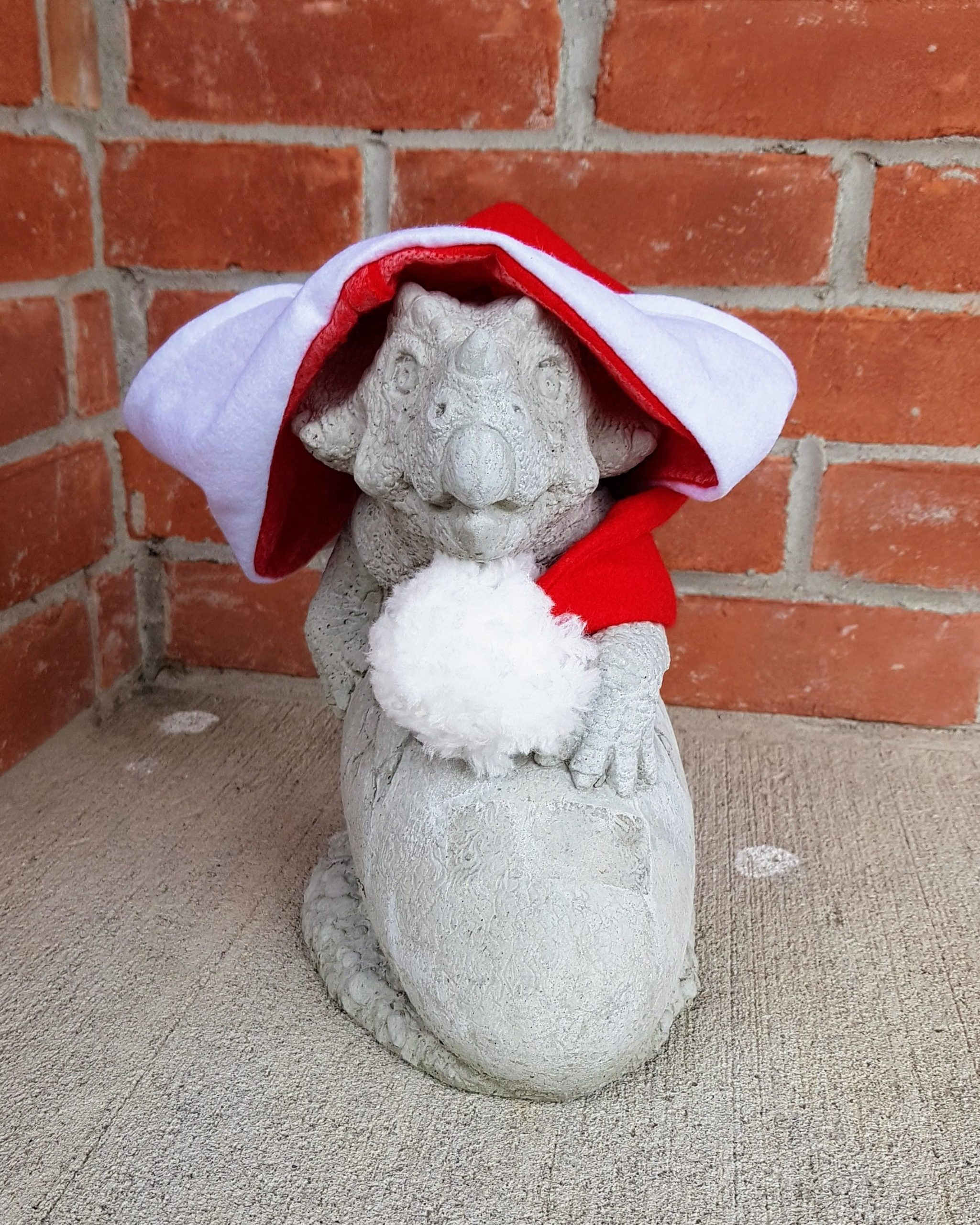 Hoodoo wearing his Christmas hat